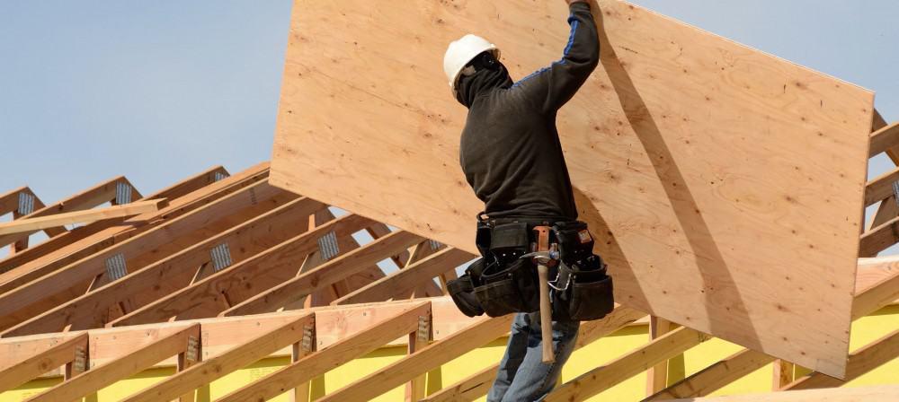 weston forest plywood panels toronto ontario canada
